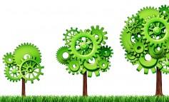 Bando Green Economy: elenco ammessi al corso